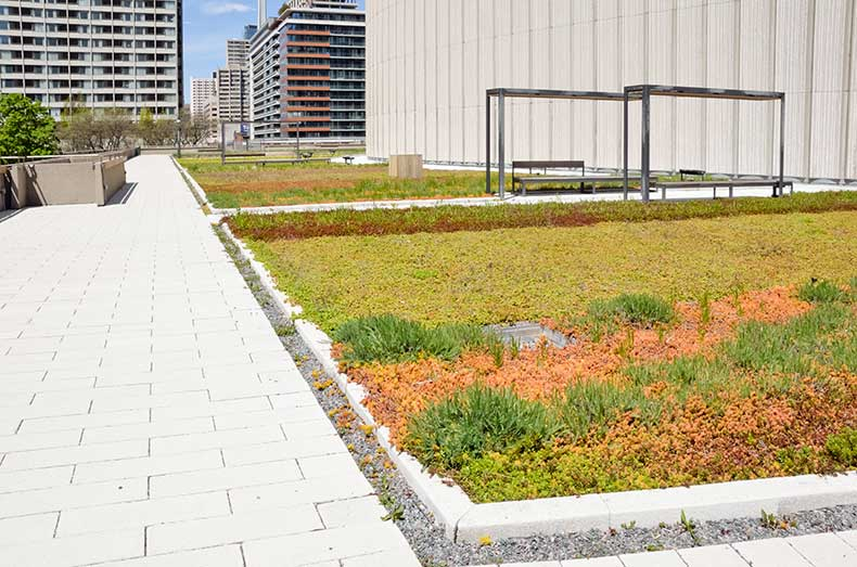 green roof XPS
